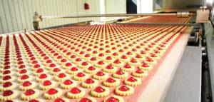 Schutz und Sicherheit in der Lebensmittelproduktion