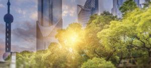 green_city_park_