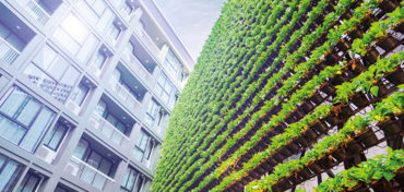 Improve sustainability using smart surveillance