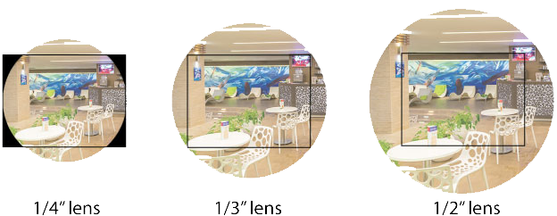 "The effects of different lenses on a 1/3"" image sensor."